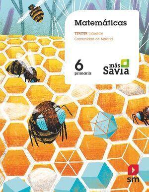MATEMATICAS 6º EP MAS SAVIA ED.2019 (191949) SM